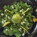 Dandelion salad with cucumber in a black plate and yellow flowers.