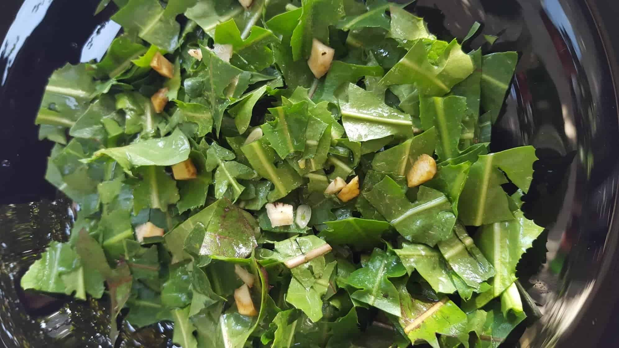 Dandelion Greens and Roots Salad