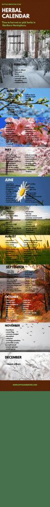 Herbal calendar about harvesting herbs in northern hemisphere.