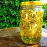 Chamomile tincture in a jar.