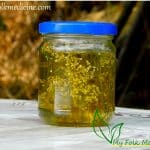 Yarrow infused oil in a jar.