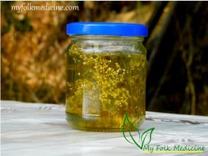 Yarrow Infused Oil Recipe – Benefits and Uses