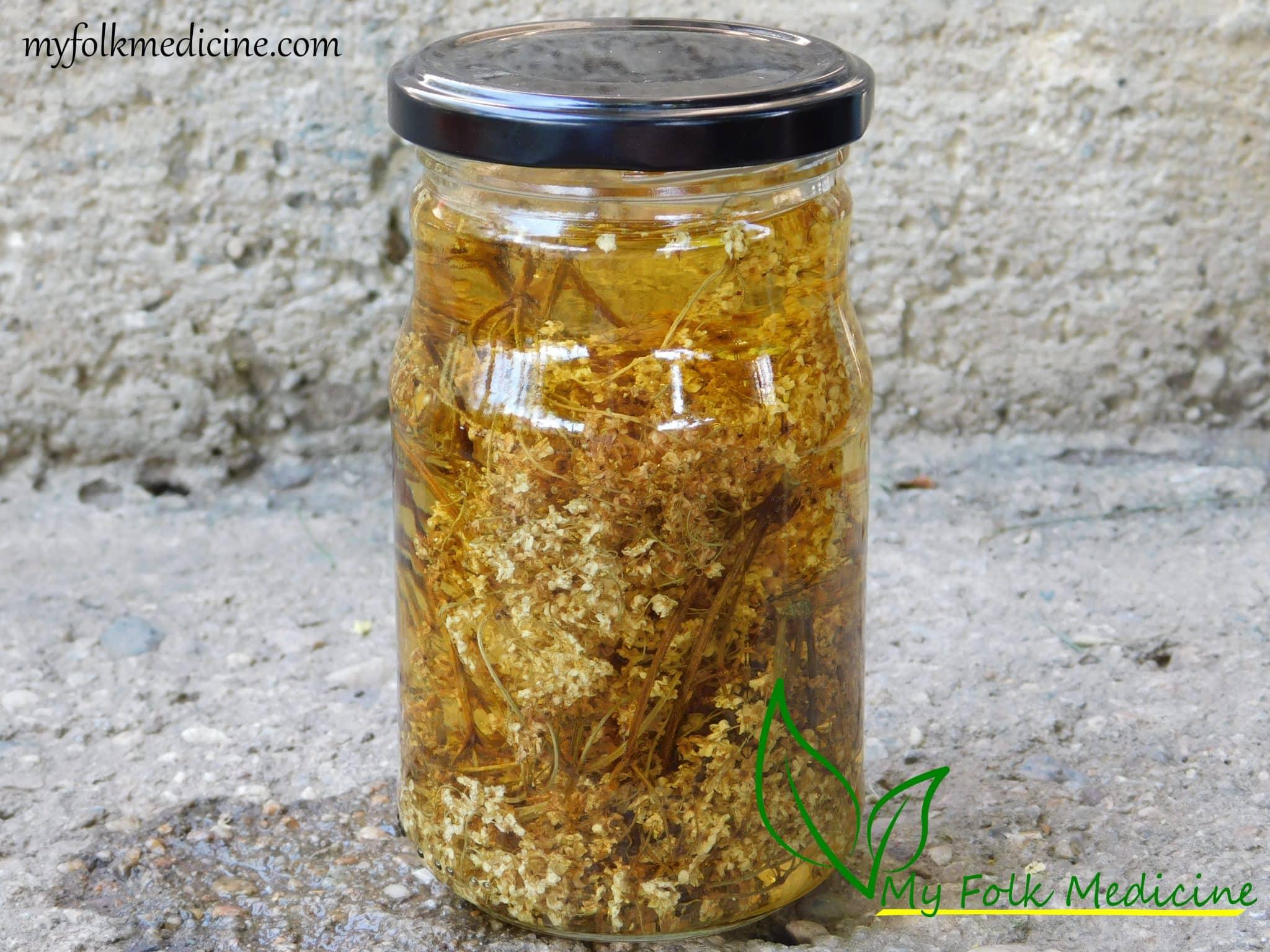 Elderflower Tincture Recipe for Cold, Flu, and Cough