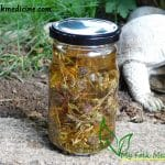 Thyme tincture in a glass jar.